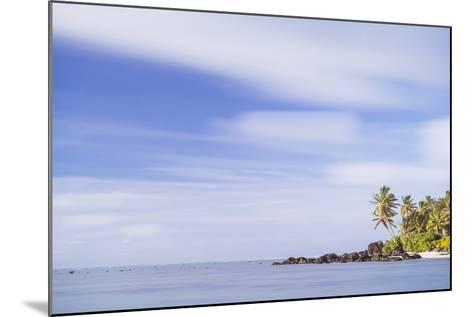 Palm Tree Long Exposure, Muri, Rarotonga, Cook Islands, South Pacific, Pacific-Matthew Williams-Ellis-Mounted Photographic Print