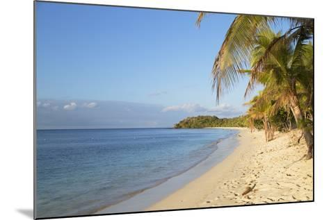 Beach on Mana Island, Mamanuca Islands, Fiji, South Pacific, Pacific-Ian Trower-Mounted Photographic Print