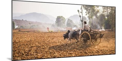 Farming Between Inle Lake and Kalaw, Shan State, Myanmar (Burma), Asia-Matthew Williams-Ellis-Mounted Photographic Print