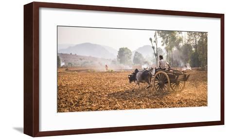 Farming Between Inle Lake and Kalaw, Shan State, Myanmar (Burma), Asia-Matthew Williams-Ellis-Framed Art Print