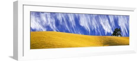 Cirrus Clouds over a Hillside, Templeton, San Luis Obispo County, California, Usa--Framed Art Print