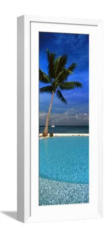 Palm Tree by a Pool Overlooking the Ocean, Tahiti, French Polynesia--Framed Art Print