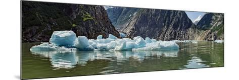 Icebergs Floating on Water of Tracy Arm Fjord, Southeast Alaska, Alaska, Usa--Mounted Photographic Print