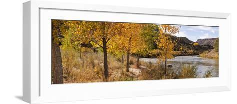 People Fishing in the Rio Grande River, Orilla Verde Recreation Area, Pilar, Taos--Framed Art Print
