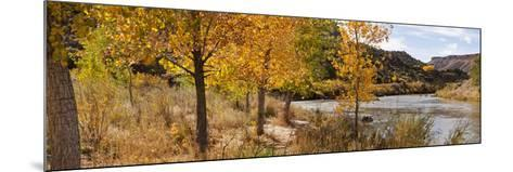 People Fishing in the Rio Grande River, Orilla Verde Recreation Area, Pilar, Taos--Mounted Photographic Print