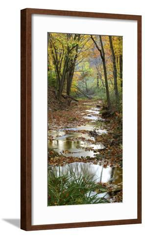 Autumn at Schuster Hollow in Grant County, Wisconsin, Usa--Framed Art Print