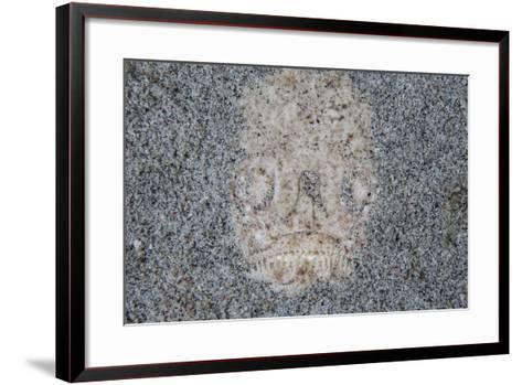 A Stargazer Fish Camouflages Itself in the Sand-Stocktrek Images-Framed Art Print