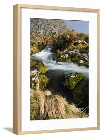 Stream in Croesor Valley, Gwynedd, Wales, United Kingdom, Europe-John Alexander-Framed Art Print