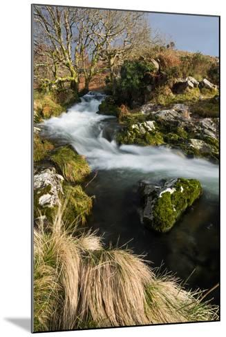 Stream in Croesor Valley, Gwynedd, Wales, United Kingdom, Europe-John Alexander-Mounted Photographic Print