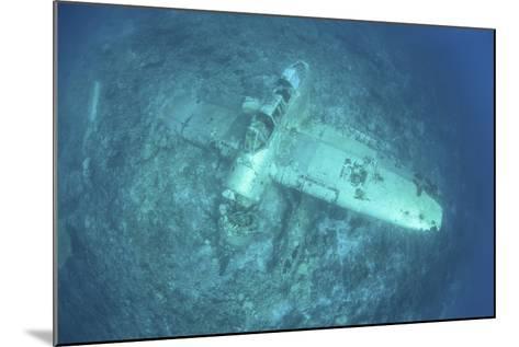 A Japanese Jake Seaplane on the Seafloor of Palau's Lagoon-Stocktrek Images-Mounted Photographic Print