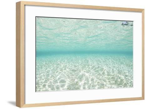 Bright Sunlight Dances across a Shallow Sand Seafloor in Palau-Stocktrek Images-Framed Art Print