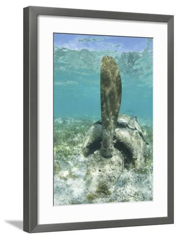 The Propeller of a Japanese Zero Fighter on a Shallow Reef in Palau-Stocktrek Images-Framed Art Print