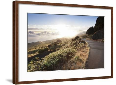 Road at the South Coast at Sunset, Near Orchilla Volcano, El Hierro, Canary Islands, Spain-Markus Lange-Framed Art Print