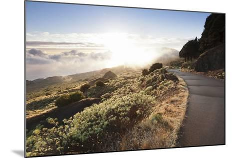 Road at the South Coast at Sunset, Near Orchilla Volcano, El Hierro, Canary Islands, Spain-Markus Lange-Mounted Photographic Print