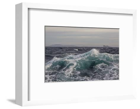 High Winds and Heavy Seas on Approach to the New Island Nature Reserve, Falkland Islands-Michael Nolan-Framed Art Print