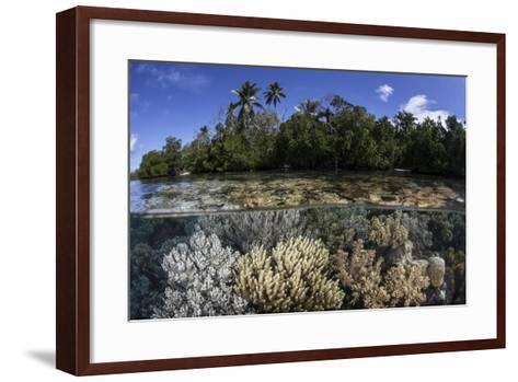 Soft Leather Corals Grow in the Shallow Waters in the Solomon Islands-Stocktrek Images-Framed Art Print