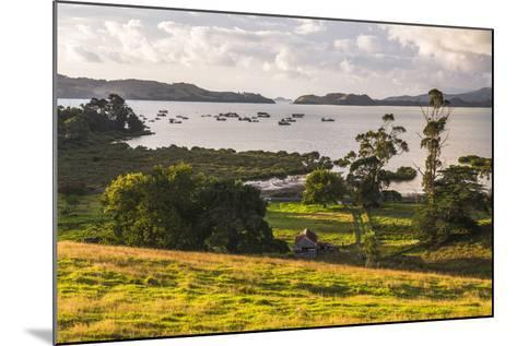 Countryside at Coromandel Town, Coromandel Peninsula, North Island, New Zealand, Pacific-Matthew Williams-Ellis-Mounted Photographic Print