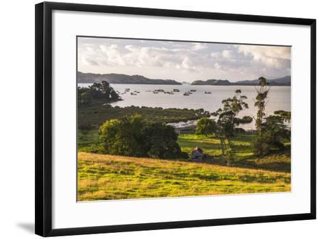 Countryside at Coromandel Town, Coromandel Peninsula, North Island, New Zealand, Pacific-Matthew Williams-Ellis-Framed Art Print
