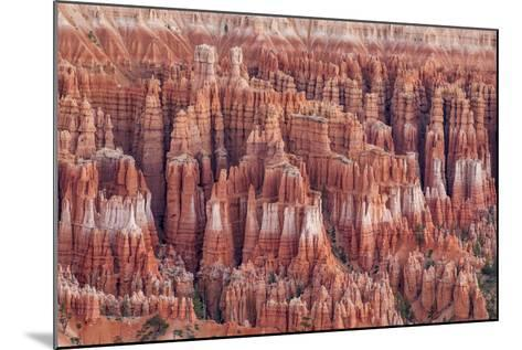 Bryce Canyon National Park Utah, United States of America, North America-Michael DeFreitas-Mounted Photographic Print