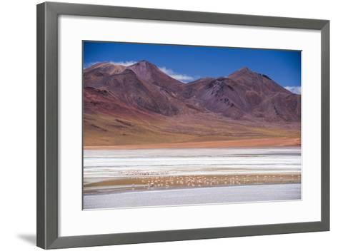Flamingos at Laguna Hedionda, a Salt Lake Area in the Altiplano of Bolivia, South America-Matthew Williams-Ellis-Framed Art Print