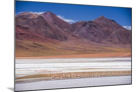 Flamingos at Laguna Hedionda, a Salt Lake Area in the Altiplano of Bolivia, South America-Matthew Williams-Ellis-Mounted Photographic Print