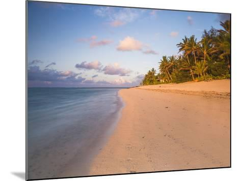 Tropical Beach with Palm Trees at Sunrise, Rarotonga, Cook Islands, South Pacific, Pacific-Matthew Williams-Ellis-Mounted Photographic Print