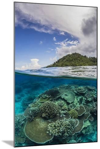 Half Above and Half Below View of Coral Reef at Pulau Setaih Island, Natuna Archipelago, Indonesia-Michael Nolan-Mounted Photographic Print