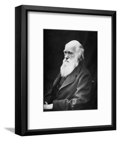 Portrait of Naturalist and Geologist Charles Darwin-Stocktrek Images-Framed Art Print