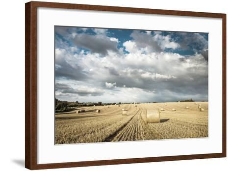 Baled Field, Gloucestershire, England, United Kingdom, Europe-John Alexander-Framed Art Print