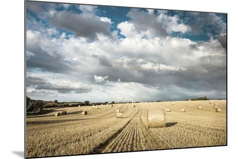 Baled Field, Gloucestershire, England, United Kingdom, Europe-John Alexander-Mounted Photographic Print
