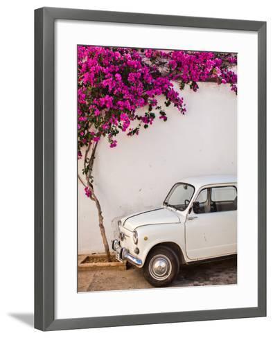 Fiat under Tree in Mojacar, Andalucia, Spain, Europe-John Alexander-Framed Art Print