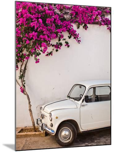 Fiat under Tree in Mojacar, Andalucia, Spain, Europe-John Alexander-Mounted Photographic Print