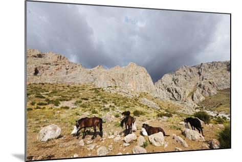 Ala Daglar National Park, Cappadocia, Anatolia, Turkey, Asia Minor, Eurasia-Christian Kober-Mounted Photographic Print