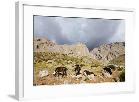 Ala Daglar National Park, Cappadocia, Anatolia, Turkey, Asia Minor, Eurasia-Christian Kober-Framed Art Print