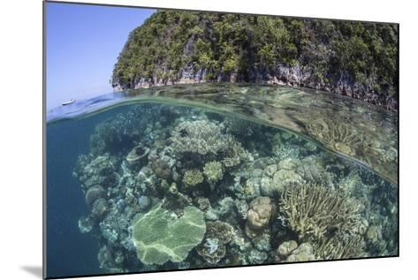 A Healthy Coral Reef Grows Near Limestone Islands in Raja Ampat-Stocktrek Images-Mounted Photographic Print