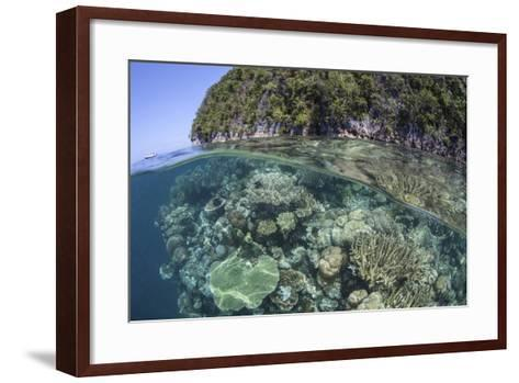 A Healthy Coral Reef Grows Near Limestone Islands in Raja Ampat-Stocktrek Images-Framed Art Print