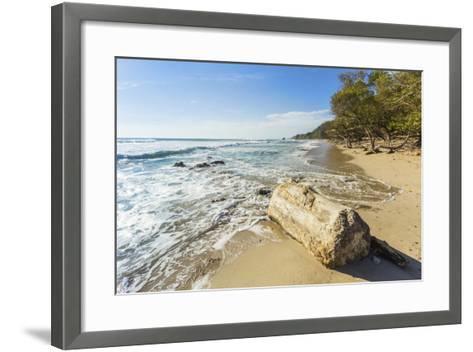 Driftwood on This Beautiful Surf Beach Near Mal Pais, Playa Santa Teresa, Costa Rica-Rob Francis-Framed Art Print