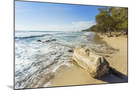 Driftwood on This Beautiful Surf Beach Near Mal Pais, Playa Santa Teresa, Costa Rica-Rob Francis-Mounted Photographic Print