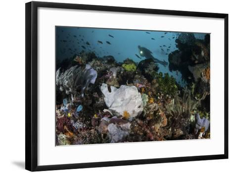 A Giant Frogfish Blends into its Reef Surroundings in Indonesia-Stocktrek Images-Framed Art Print