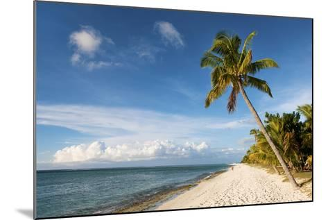 Turquoise Sea and White Palm Fringed Beach, Le Morne, Black River, Mauritius, Indian Ocean, Africa-Jordan Banks-Mounted Photographic Print
