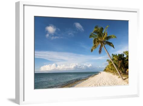 Turquoise Sea and White Palm Fringed Beach, Le Morne, Black River, Mauritius, Indian Ocean, Africa-Jordan Banks-Framed Art Print