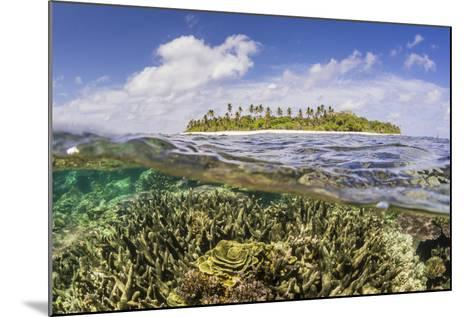 Half Above and Half Below on a Remote Small Islet in the Badas Island Group Off Borneo, Indonesia-Michael Nolan-Mounted Photographic Print