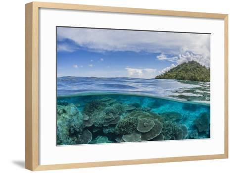 Half Above and Half Below View of Coral Reef at Pulau Setaih Island, Natuna Archipelago, Indonesia-Michael Nolan-Framed Art Print