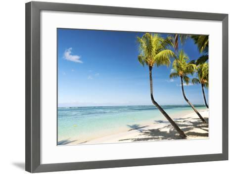 Turquoise Sea and White Palm Fringed Beach at Wolmar, Black River, Mauritius, Indian Ocean, Africa-Jordan Banks-Framed Art Print