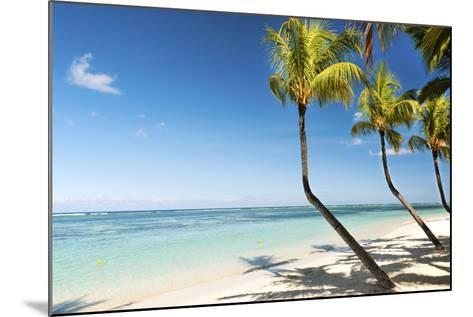 Turquoise Sea and White Palm Fringed Beach at Wolmar, Black River, Mauritius, Indian Ocean, Africa-Jordan Banks-Mounted Photographic Print