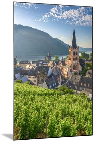 Germany, Rhineland Palatinate, River Rhine-Alan Copson-Mounted Photographic Print
