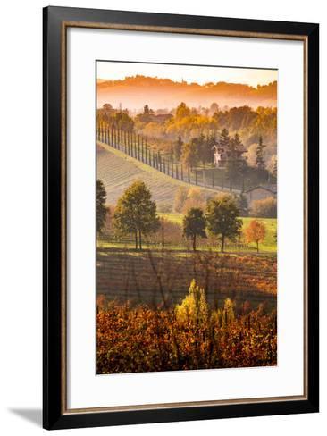 Castelvetro, Modena, Emilia Romagna-Francesco Riccardo Iacomino-Framed Art Print