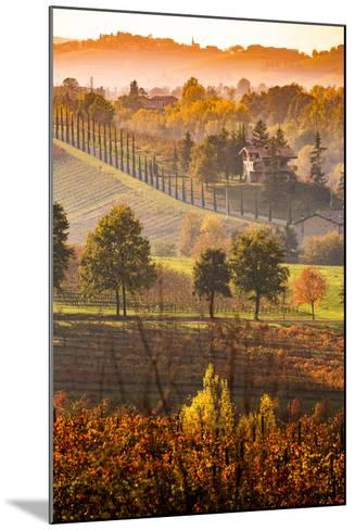 Castelvetro, Modena, Emilia Romagna-Francesco Riccardo Iacomino-Mounted Photographic Print