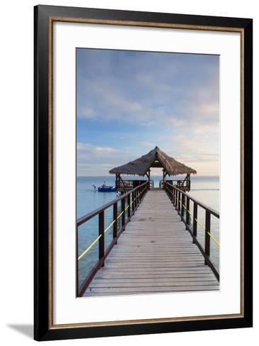 Jetty on Leleuvia Island, Lomaiviti Islands, Fiji-Ian Trower-Framed Art Print