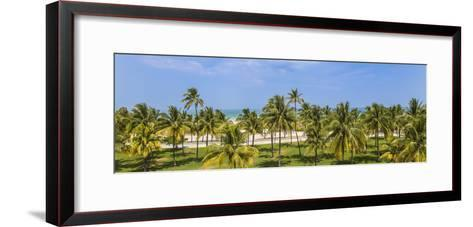 U.S.A, Miami, Miami Beach, South Beach, Ocean Drive, View over Lummus Park Towards South Beach-Jane Sweeney-Framed Art Print